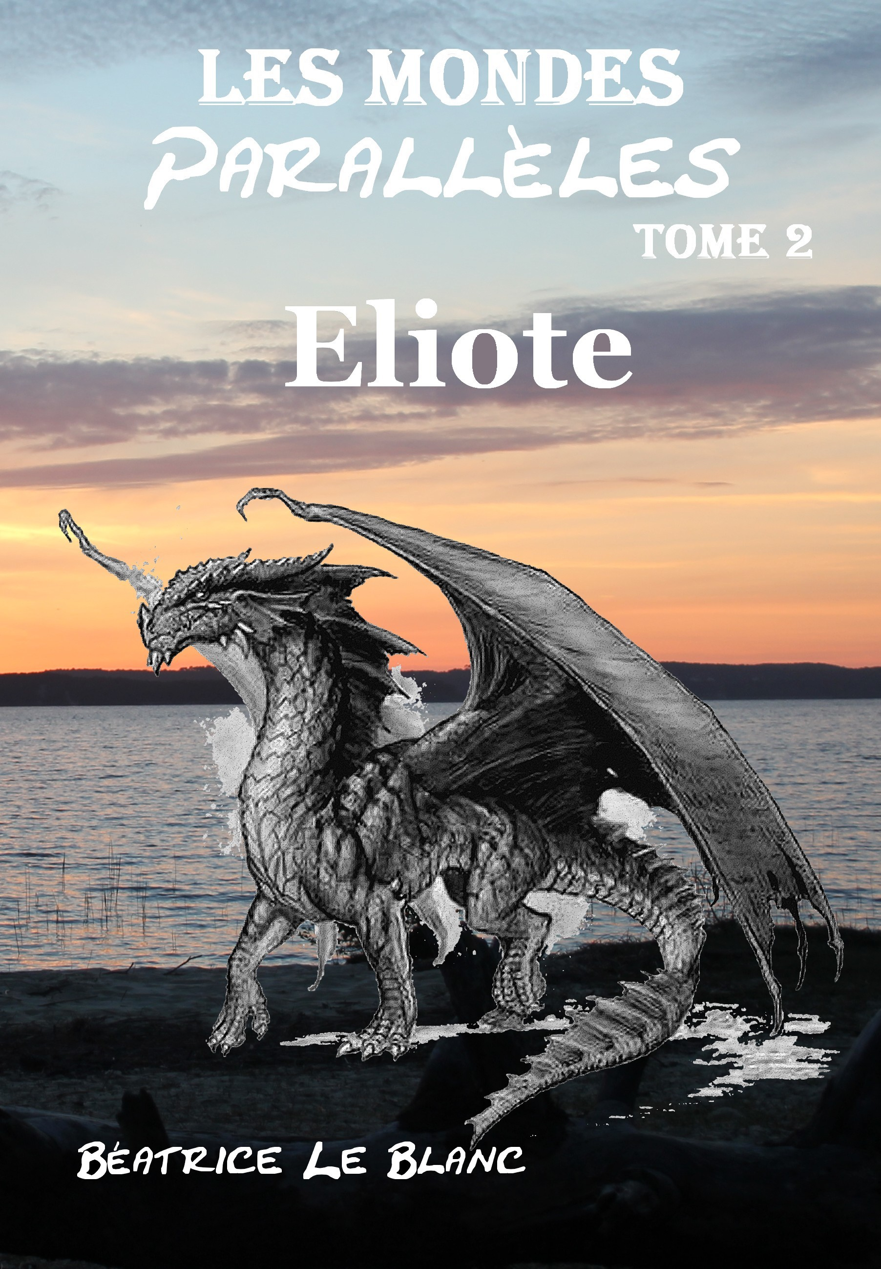 LMP2 - Eliote